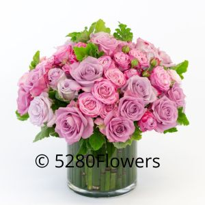 2 or 4 dozen Pink and Lavender Rose Bowl with Fair Trade Roses