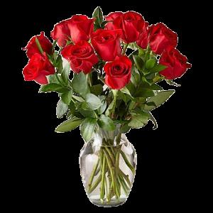 Denver Same Day Delivery Red Rose Arrangement