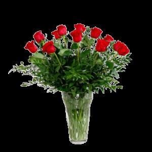 One Dozen red Rose arrangement Denver Delivery